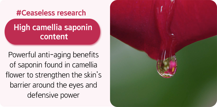 #Ceaseless research High camellia saponin 
