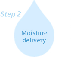 step2 Moisture