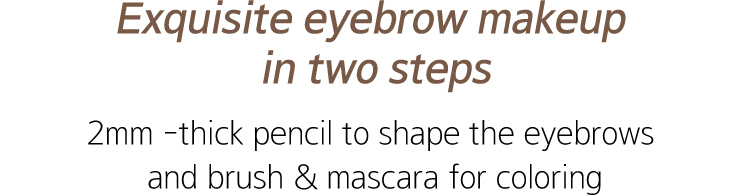 Two Step Perfect Brow Powder image